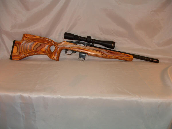 10 22 Ruger. Ruger 10/22 .17 HM2 Conversion